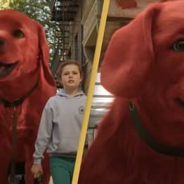 Clifford The Big Red Dog Live-Action Remake Drops First Trailer