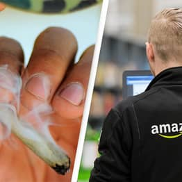 Amazon To No Longer Dismiss Workers If They Test Positive For Marijuana Use
