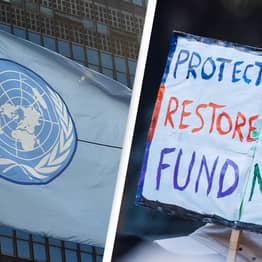UN Says World Must Restore Area The Size Of China To Beat Climate Crisis