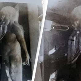 Frame From Roswell 'Alien Autopsy' Video To Be Sold For At Least $1 Million