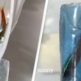 Salon Accused Of Cruelty After Inserting Live Fish Into False Nails