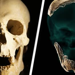 New Type Of Human Discovered After Recovery Of 120,000-Year-Old Skull