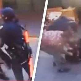 Bystanders Rush To Help Asian Police Officer As She Was Attacked By Suspect
