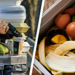 Almost Half Of Food Produced In US Goes To Waste