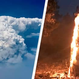 'Bootleg Fire' In Oregon Is So Intense, It's Creating Its Own Weather