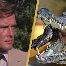 Insanely Dangerous Bond Stunt With Crocodiles Was Actually Real