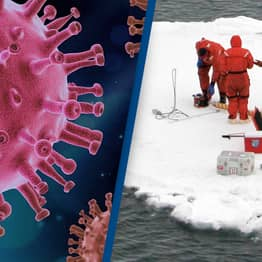 Scientists Discover Almost 30 Unknown Viruses Frozen In Ice