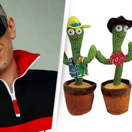 Mother Finds Child's 'Dancing Cactus Toy' Swearing And Rapping About Cocaine In Polish