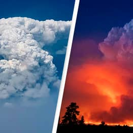 Massive 'Fire Clouds' Are Dropping Embers On Firefighters Battling US's Biggest Blaze