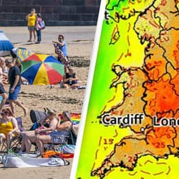 UK Heatwave Deaths Rise Amid Record High Temperatures