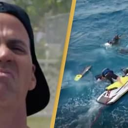 Jackass Crew Dice With Death As They Join Discovery Channel's Shark Week