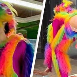 London Library Apologises After Man Dressed As 'Rainbow Dildo Butt Monkey' Appears At Kids' Event