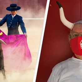 Bullfighting Festival Axed After Bulls Named 'Feminist' And 'Nigerian' Cause Controversy