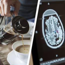 High Coffee Consumption Linked To Smaller Brain Volume, Research Shows