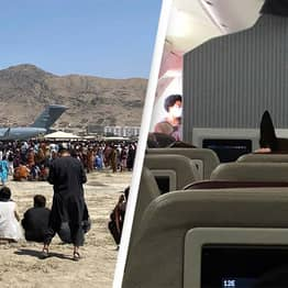 Afghanistan: US Military Dogs Reportedly Given Seats On Flights As Refugees Flee Taliban