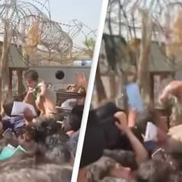 Afghanistan: Shocking Footage Shows Baby Being Passed Around Crowds As People Attempt To Flee Kabul