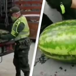 Insane Video Reveals How People Use Watermelons To Smuggle Drugs