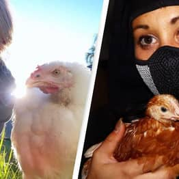 Activist Facing Up To Life In Prison Says Punishment 'Will Never Compare' To Horror Faced By Animals