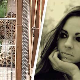 Model Attacked By Leopard As She Posed For A Photoshoot Inside Its Enclosure