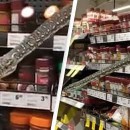 Footage Shows Moment Terrifying Python Lunges Towards Woman After Hiding On Supermarket's Spice Aisle