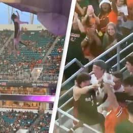 College Football Fans Save Cat From Terrifying Stadium Fall With American Flag