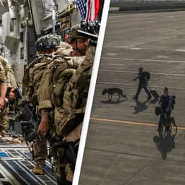 No Working US Military Dogs Left Behind In Afghanistan, Pentagon Confirms