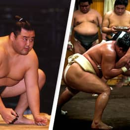 Doctor Explains The Trick That Keeps Sumo Wrestlers Healthy