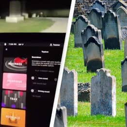 Driver Convinced Teslas 'See Dead People' After Being Spooked Out In Cemetery