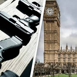 'Senior Tory MP' Calls For All MPs To Get Their Own Gun For Protection