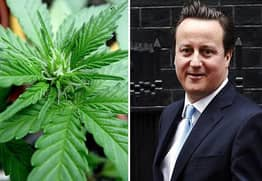 Government Rejects Calls For Cannabis Legalisation Despite 200k-Signature Petition