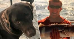 Man Takes Own Life Day After Service Dog Mauled To Death By Florida Alligator