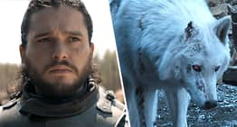 Game Of Thrones Director Explains Why Jon Snow Didn't Pet Ghost Goodbye