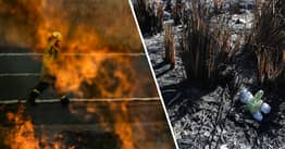 CORRECTION: More Than 100 People Arrested In Australia For Bushfire-Related Offences In 2019