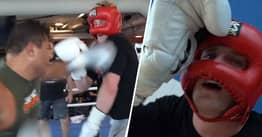 Logan Paul Gets Brutally Knocked Out By Undefeated UFC Fighter Paulo Costa