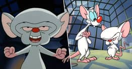 Pinky And The Brain Are Returning, Animaniacs Actor Rob Paulsen Confirms