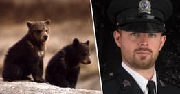 Canadian Conservation Officer Fired For Refusing To Kill Bear Cubs Wins Legal Battle To Clear His Name