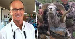 Minnesota Dentist Who Killed Cecil The Lion Pictured Hunting Sheep In Mongolia