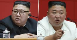 Kim Jong-Un Is Confiscating North Korea's Pet Dogs, Reports Say