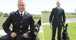 Police Dog On First Shift Finds Missing Mother And Her Baby On Mountain