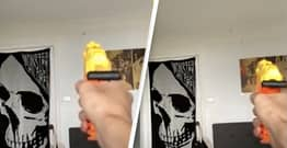 Guy Shoots Fly Out Of The Air With Nerf Gun