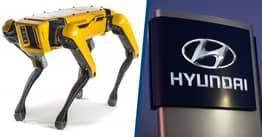 Hyundai Reportedly In Talks To Buy Boston Dynamics In $1 Billion Deal