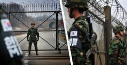 North Korean Gymnast Flees To South Korea By 'Pole Vaulting' Over Border
