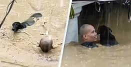 Man Swims Through 6ft-Deep Water To Rescue Dog Trapped In Flooded House