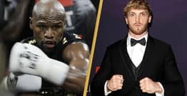 Floyd Mayweather Confirms He's Fighting Logan Paul On February 20