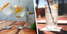 Gin Company Hiring Tasters Who Will Be Paid In Bottles Of Alcohol