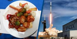 SpaceX Has Launched Roast Turkey And Cranberry Sauce To Astronauts On The International Space Station