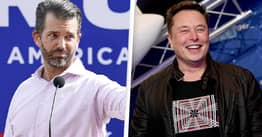 Donald Trump Jr And Elon Musk Slam Robinhood For Freezing GameStop Trading