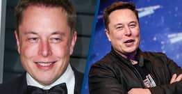 Elon Musk Hiring Specialist To Defend Him From Social Media Trolls