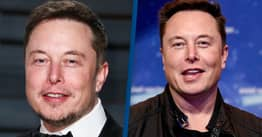 Elon Musk Says He's Writing A Book About Tesla And SpaceX