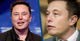 Elon Musk's Net Worth Falls $15 Billion As Tesla Shares Drop 9% In One Day